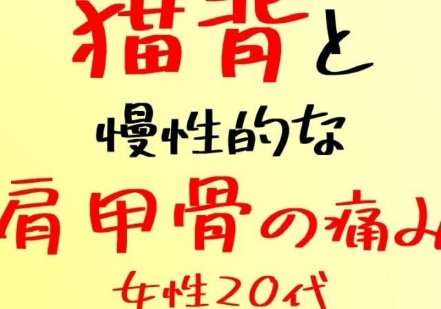 shigaseitai-nekoze30 (3)