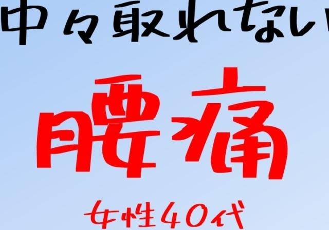 shigaseitai-oumihatiman-youtu (1)