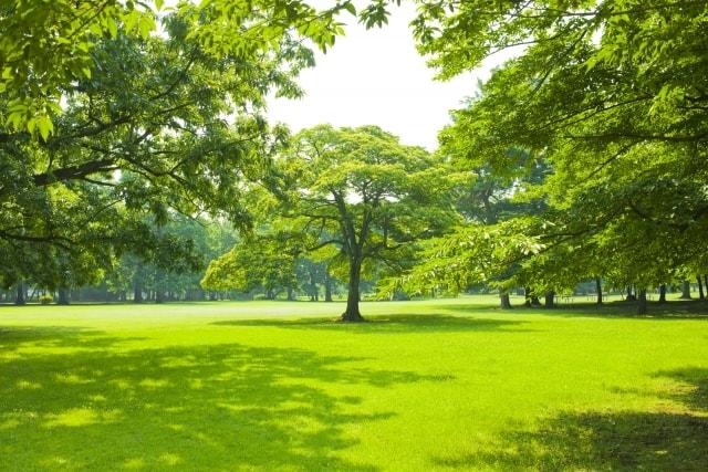 滋賀の整体院HOPE-妊婦さんの日光でのストレス発散